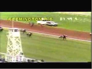 Vo Rogue- The Greatest Show On Turf