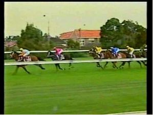 Cox Plate 2001 - Northerly
