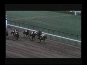 1963 Whitney Handicap - Kelso