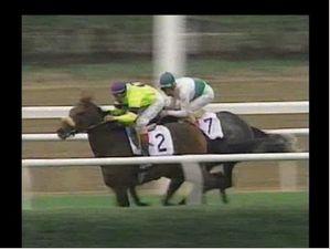 1995 Turf Classic Invitational Stakes - Turk Passer