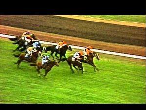 1983 Melbourne Cup - Kiwi