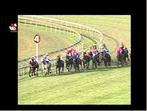 Rough Habit's 1992 Stradbroke Win