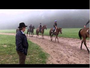 Treve Limbers Up For Royal Ascot