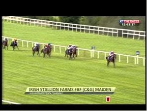 Ebf Maiden, Leopardstown - Order Of St George