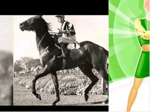 The Doncaster Mile 150Th Anniversary Tribute
