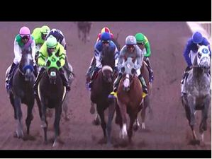 2016 Breeders' Cup Highlights